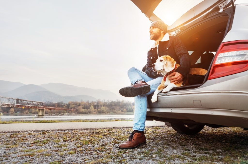 Lundgren Consultants - A man and his dog sit in their car looking out.